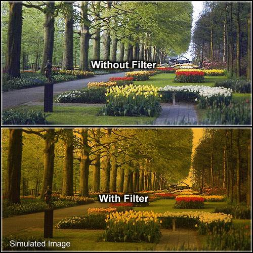 Formatt Hitech 52mm Solid Tangerine 3 Filter