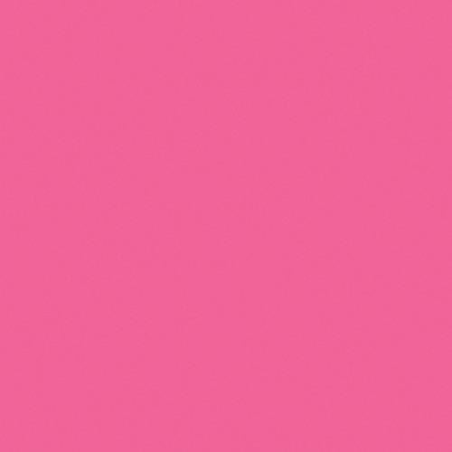 "Gam GC152  GamColor #152 Party Pink (20x24"" Sheet)"