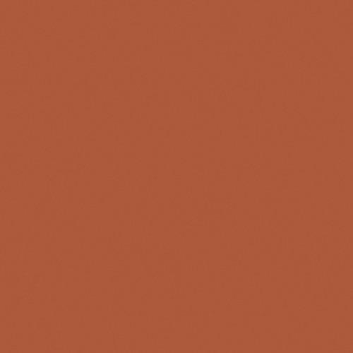 """GAM GC1556 #1556 CTO/ Neutral Density (ND) .3 Cine Filter (20 x 24"""" Sheet)"""