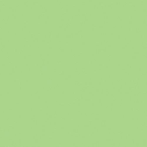 "GAM 1/2 Plus Green Cine Filter (20 x 24"" Sheet)"