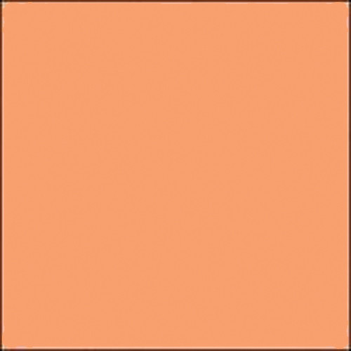 "Gam GC325  GamColor Colored Cine Filter #325 (Bastard Amber) (20x24"" Sheet)"