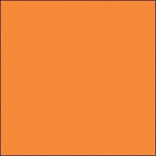 "Gam GC342  GamColor Colored Cine Filter #342 (Light Honey) (20x24"" Sheet)"