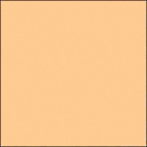 "Gam GCA365 GamColor Warm Straw Colored Cine Filter #365 (20 x 24"" Sheet)"