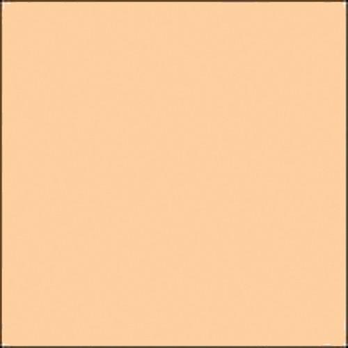 """Gam GC435  GamColor ##435 Ivory  (20 x 24"""" Sheet)"""