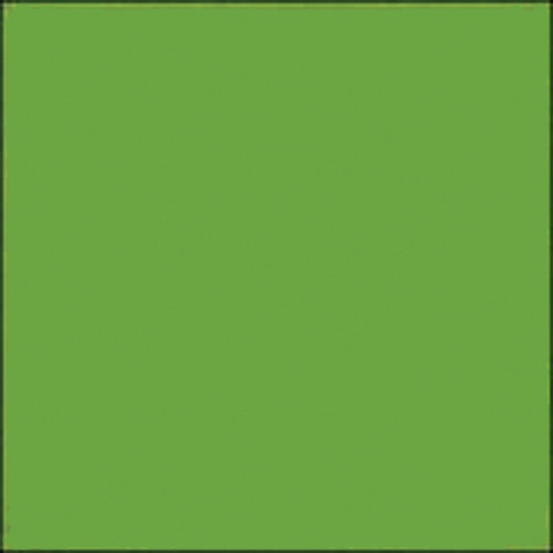 "Gam GC570  GamColor Colored Cine Filter #570 (Light Green Yellow) (20x24"" Sheet)"