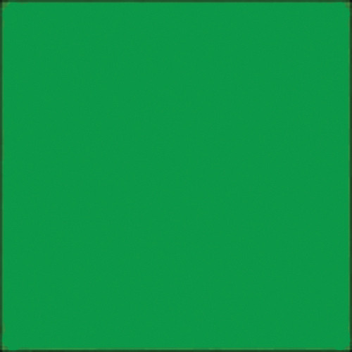 "Gam GC660  GamColor Colored Cine Filter #660 (Medium Green) (20x24"" Sheet)"