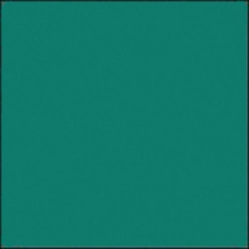 "Gam GC690  GamColor Colored Cine Filter #690 (Bluegrass) (20x24"" Sheet)"