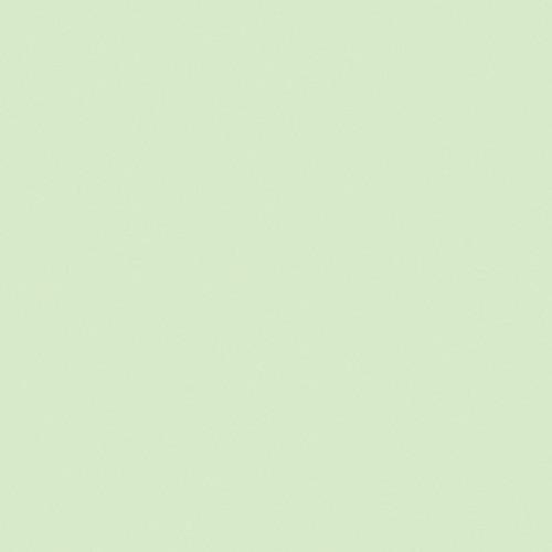 "Gam 1/4 Plus Green Cine Filter (24""x50' Roll)"