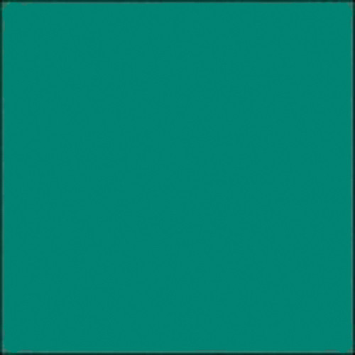 "Gam GCA685  GamColor Colored Cine Filter #685 (Pistachio ) (24""x50' Roll)"