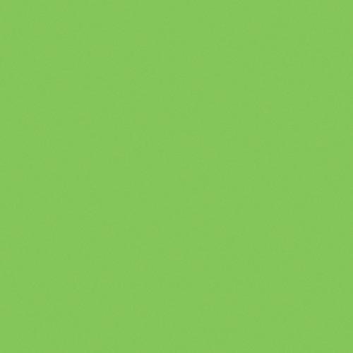 "GAM Plus Green Cine Filter (48"" x 25' Roll)"