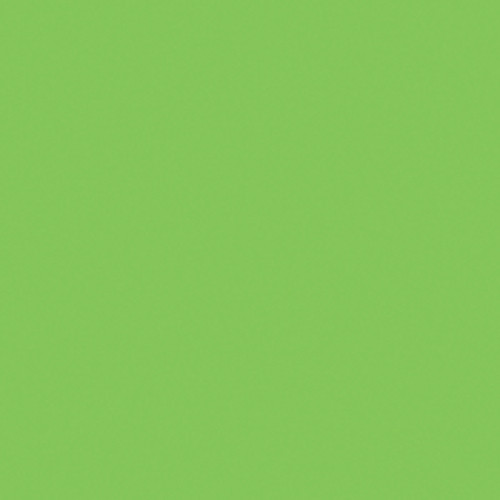 "Gam Plus Green Cine Filter (48""x25' Roll)"