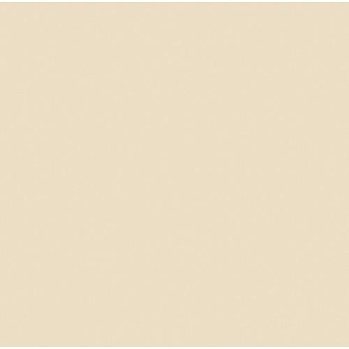 "Gam GCJR1552 1/4 CTO Orange Cine Filter (24x198"" Roll)"