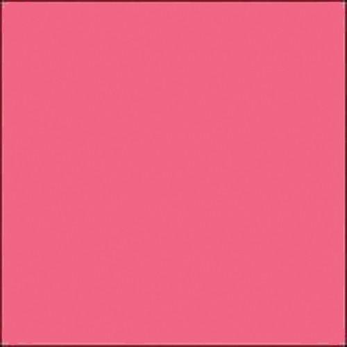 "Gam GCJR190  GamColor #190 Cold Pink (24x198"" Roll)"