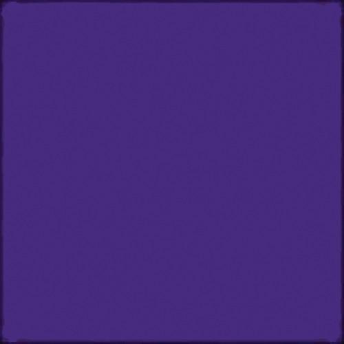 "Gam GCJR845  GamColor Colored Cine Filter #845 (Cobalt) (24x198"" Roll)"