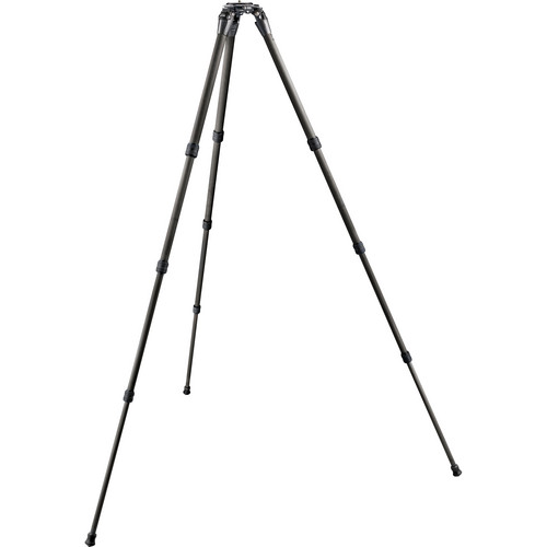 Gitzo GT2542LS Systematic Series 2 Carbon Fiber Tripod (Long)