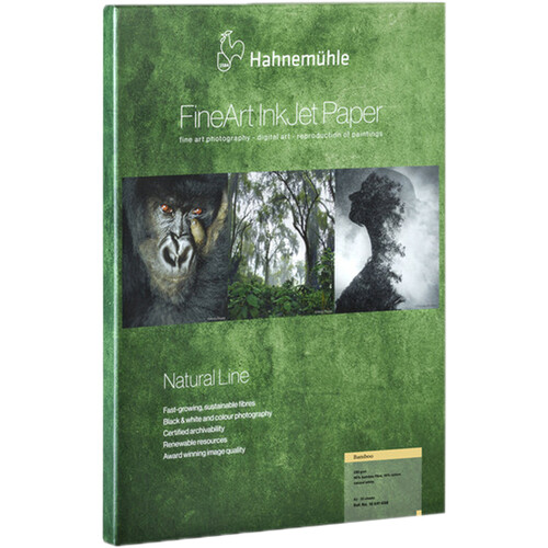"""Hahnemühle Bamboo Fine Art Paper (17 x 22"""", 25 Sheets)"""