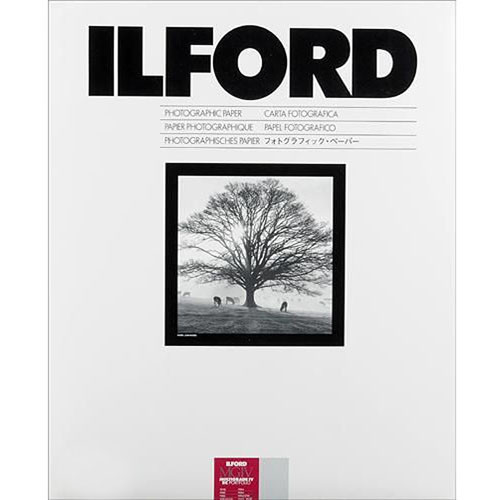 "Ilford Multigrade IV RC Portfolio Paper (Pearl, 11 x 14"", 10 Sheets)"