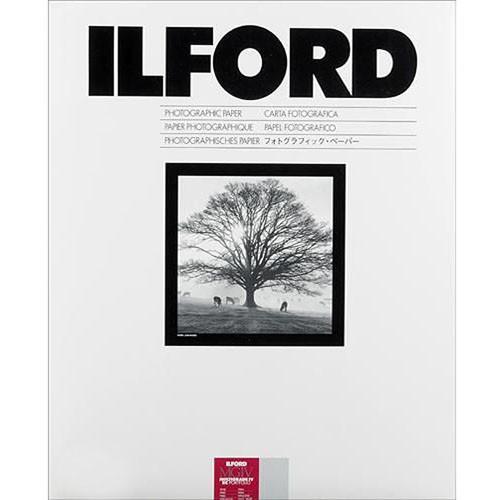 """Ilford Multigrade IV RC Portfolio Paper (Pearl, 16 x 20"""", 10 Sheets)"""