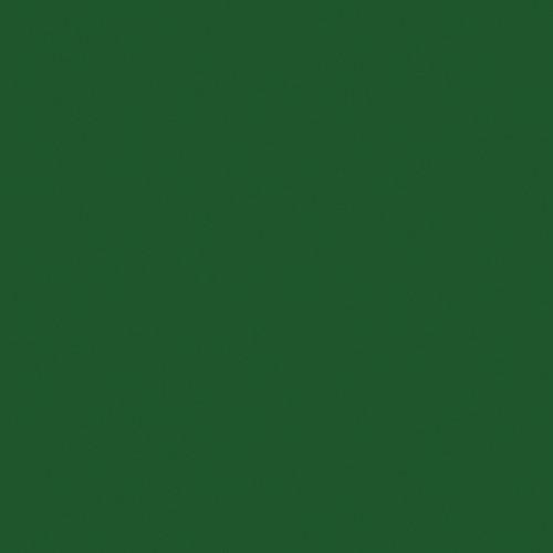 "Kodak 3 x 3"" #99 Dark Green Wratten 2 Optical Gel Filter"