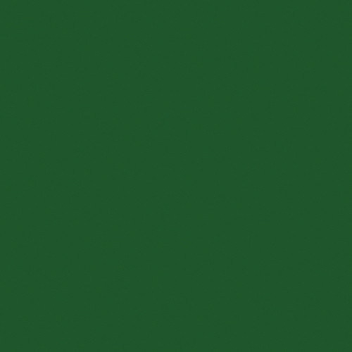 "Kodak 4 x 12"" #99 Dark Green Wratten 2 Optical Gel Filter"