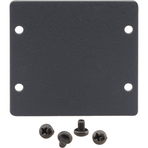 Kramer Double Insert Blank Slot Cover Plate (Black)