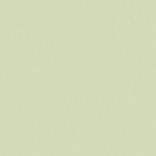 "LEE Filters 1/2 Plus Green Filter - 48"" x 25' (1.21 x 7.62 m) Roll"