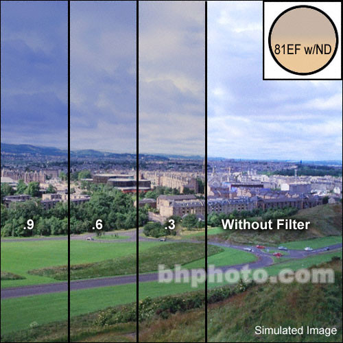 """LEE Filters 4x6"""" Combination Graduated 81EF with (ND) 0.6 Resin Filter - Hard Edge"""