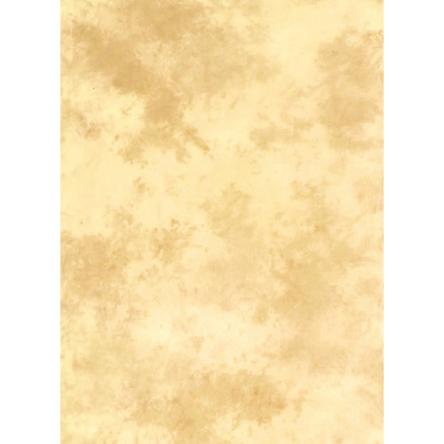Lastolite 10x24' Muslin Washable Background - Arizona