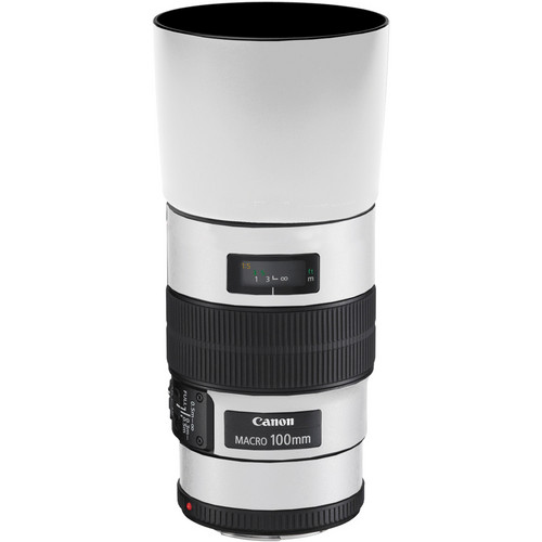 LensSkins Lens Skin for the Canon 100mm f/2.8 Macro IS Lens (Flat White)