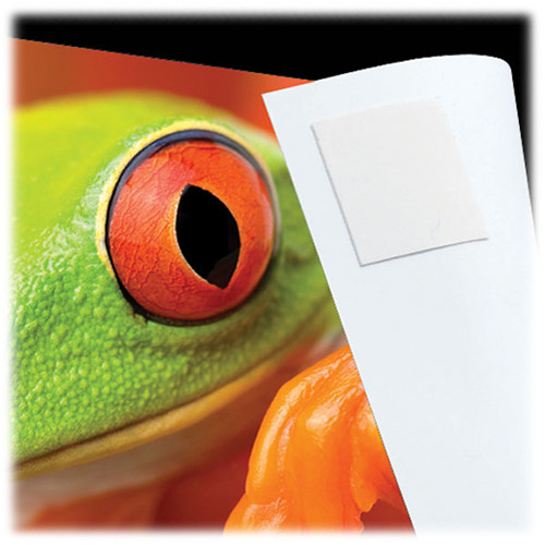 "Lineco Infinity 0.5"" Photo Tabs / 230 Per Package"