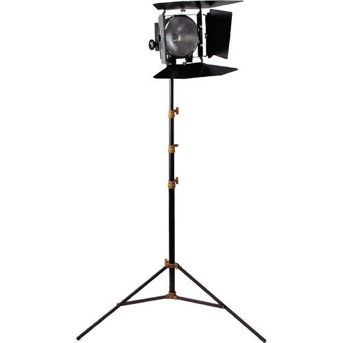 Lowel DP One-Light Kit