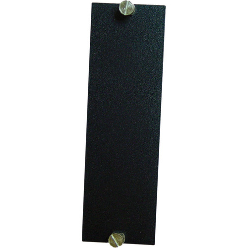 Meridian Technologies CD-BPL-D 2-Slot Blank Chassis Cover Plate