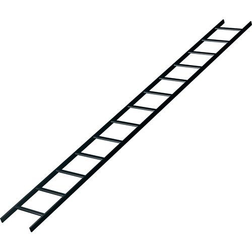 Middle Atlantic CLB-10-W24 Cable Ladder Runway
