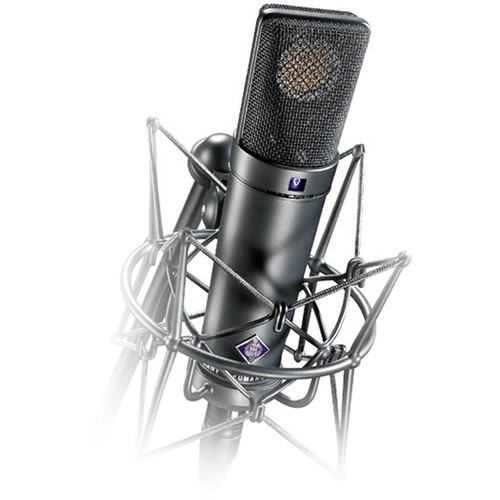 Neumann U 89 i Large Diaphragm Condenser Microphone (Nickel)