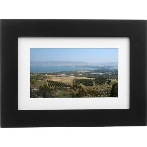 Pandigital Picture Frame