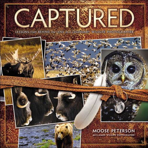 New Riders Book: Captured: Lessons from Behind the Lens of a Legendary Wildlife Photographer (First Edition)