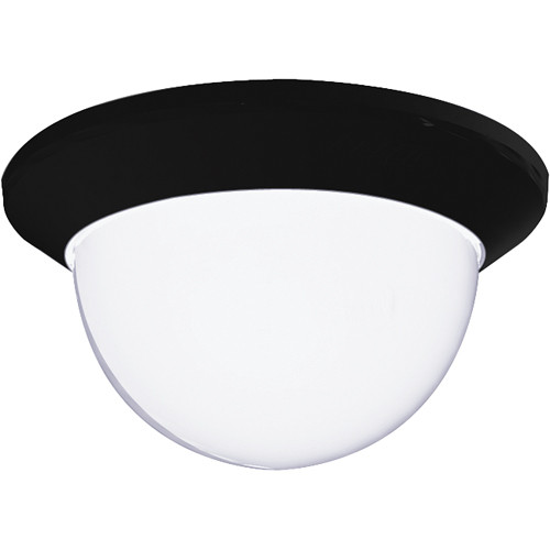 Pelco Spectra Mini Lower Dome