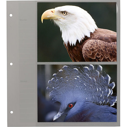 Pioneer Photo Albums Refill for Oval Framed Album #WF-5781