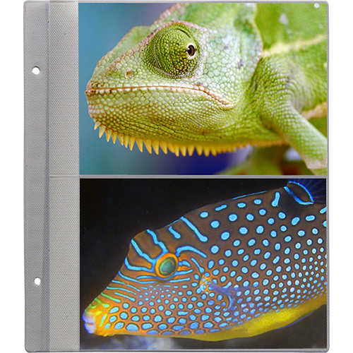 Pioneer Photo Albums R57 Refill Pages for the PS-5781 Photo Album (Pack of 5)