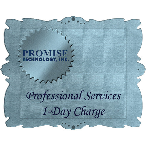 Promise Technology Professional Services (1-Day Charge)