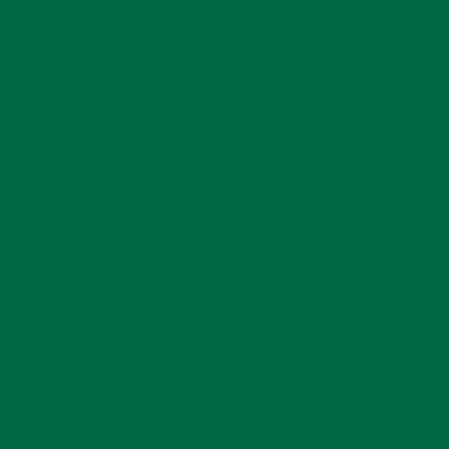 "Rosco Storaro Color Effects Lighting Filter, #2004 VS Green (24""x25' Roll)"