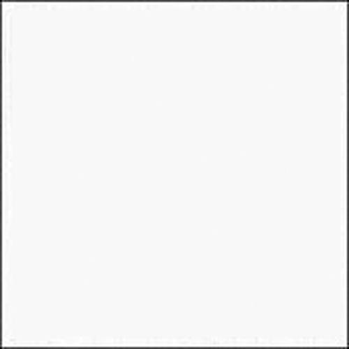 "Rosco E-Colour #228 Brushed Silk (21x24"" Sheet)"