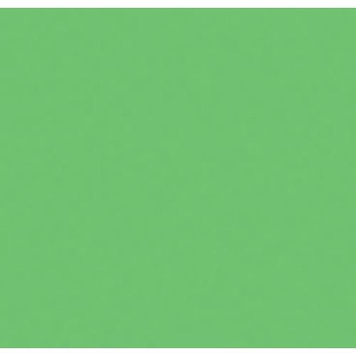 """Rosco E-Colour+ #5455 Tarragon (21 x 24"""") Sheet"""