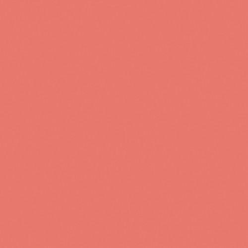 Rosco Fluorescent Lighting Sleeve/Tube Guard (#3310 Fluorofilter, 2' Long)