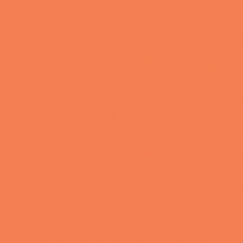 Rosco Fluorescent Lighting Sleeve/Tube Guard (E-Colour #E008 Dark Salmon, 2' Long)