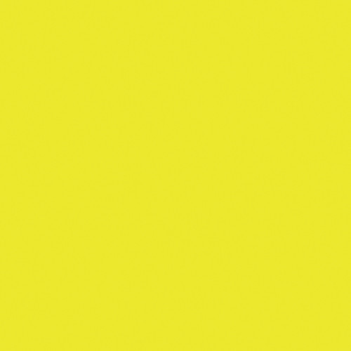Rosco Fluorescent Lighting Sleeve/Tube Guard (E-Colour #E100 Spring Yellow, 2' Long)