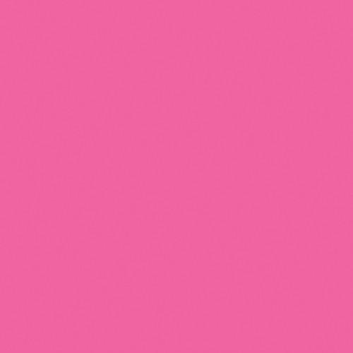 Rosco Fluorescent Lighting Sleeve/Tube Guard (E-Colour #E111 Dark Pink, 2' Long)