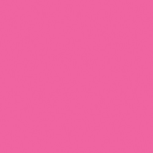 Rosco Fluorescent Lighting Sleeve/Tube Guard (E-Colour #E111 Dark Pink, 2' Long)
