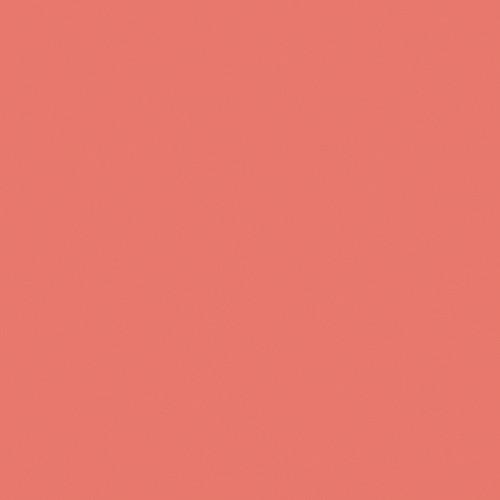 Rosco Fluorescent Lighting Sleeve/Tube Guard ( #3310 Fluorofilter, 2' Long)