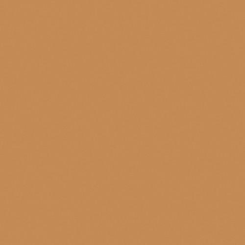 Rosco Fluorescent Lighting Sleeve/Tube Guard ( #3405 Roscosun 85N.3, 2' Long)